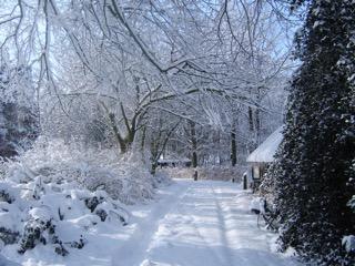 In De Tuin, Winter